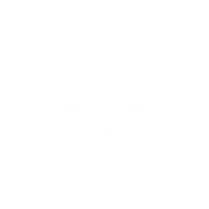 Logo_Sieger_negativ_web
